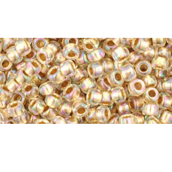 10g TOHO size 8 Gold Lined Rainbow Crystal  TR-08-994