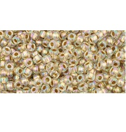 10g TOHO size 11 Gold Lined Rainbow Crystal TR-11-994