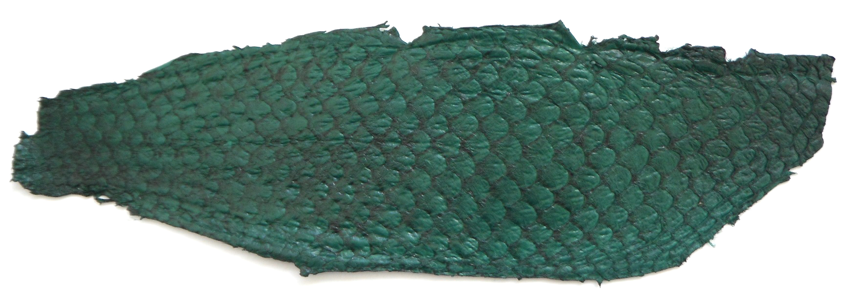 Eco friendly handmade soft suede Green Tilapia Fish Skin Leather