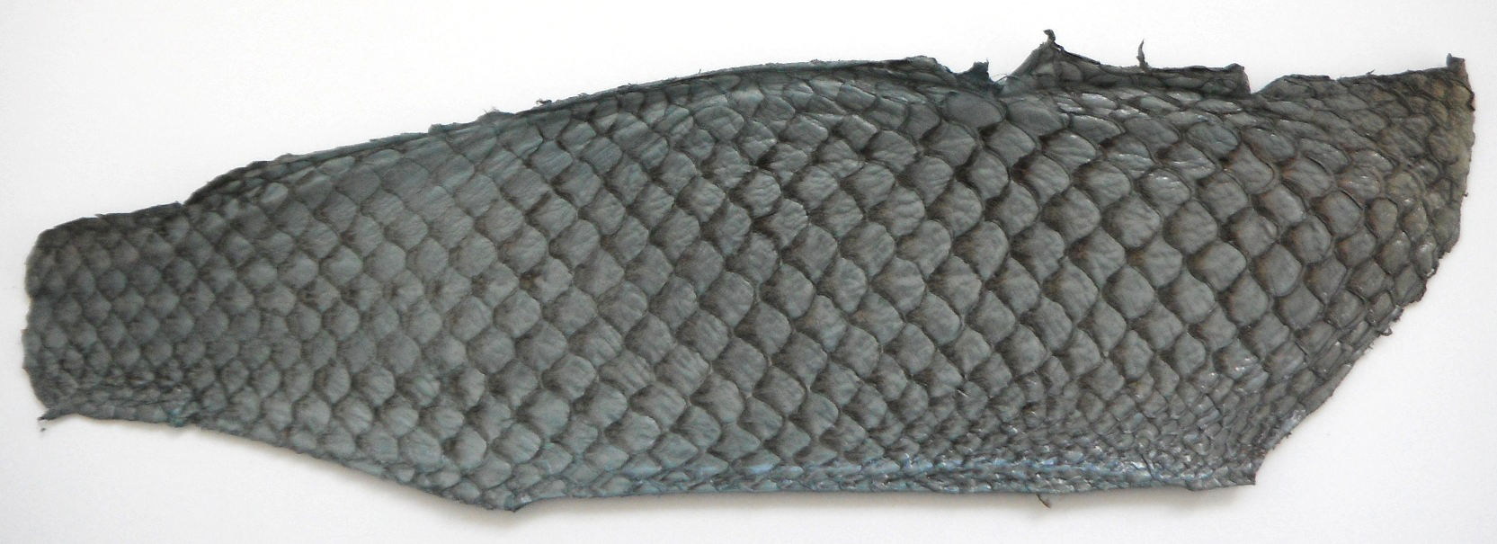 Eco friendly handmade soft suede Grey Tilapia Fish Skin Leather.