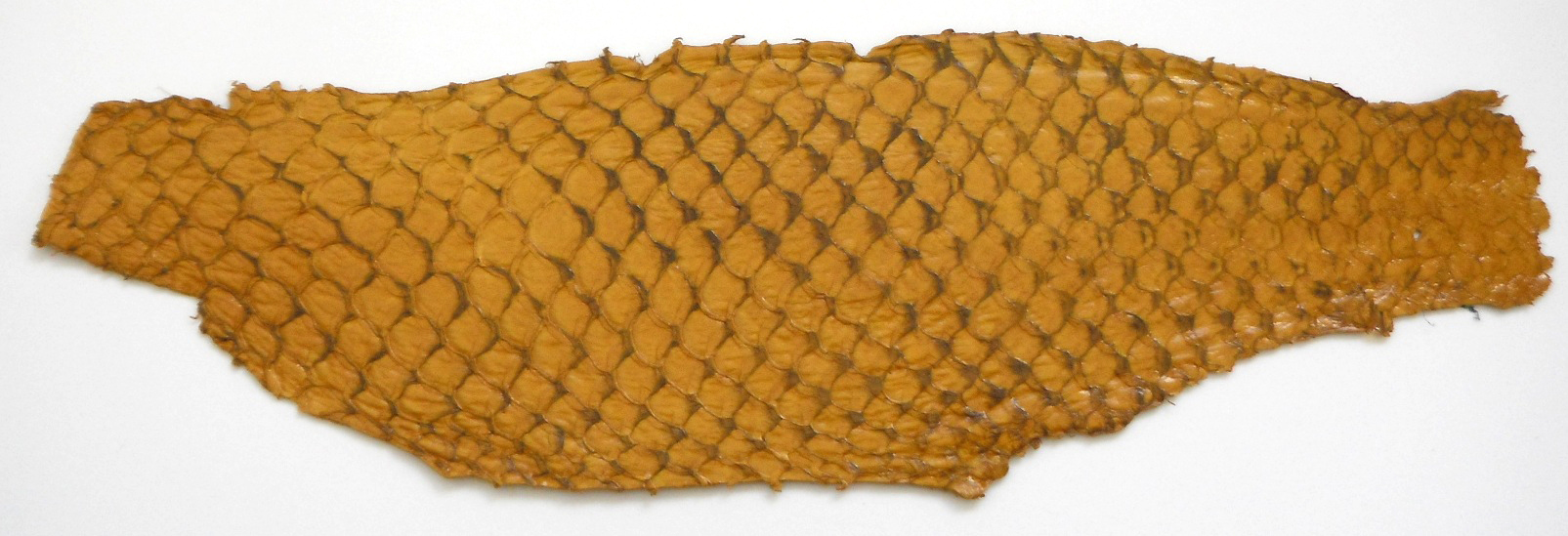 Eco friendly handmade soft suede Yellow Tilapia Fish Skin Leathe
