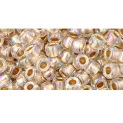 10g TOHO size 6 Gold Lined Rainbow Crystal TR-06-994