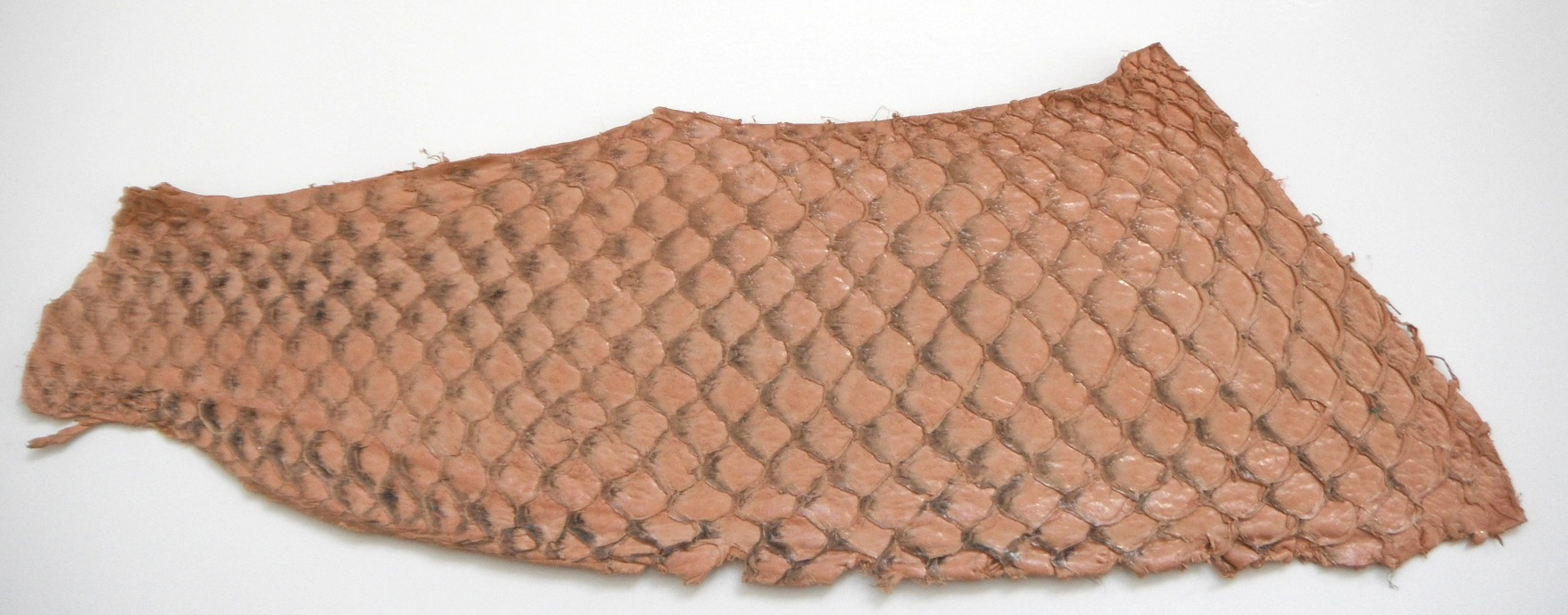 Eco friendly handmade soft suede Pink Tilapia Fish Skin Leather.