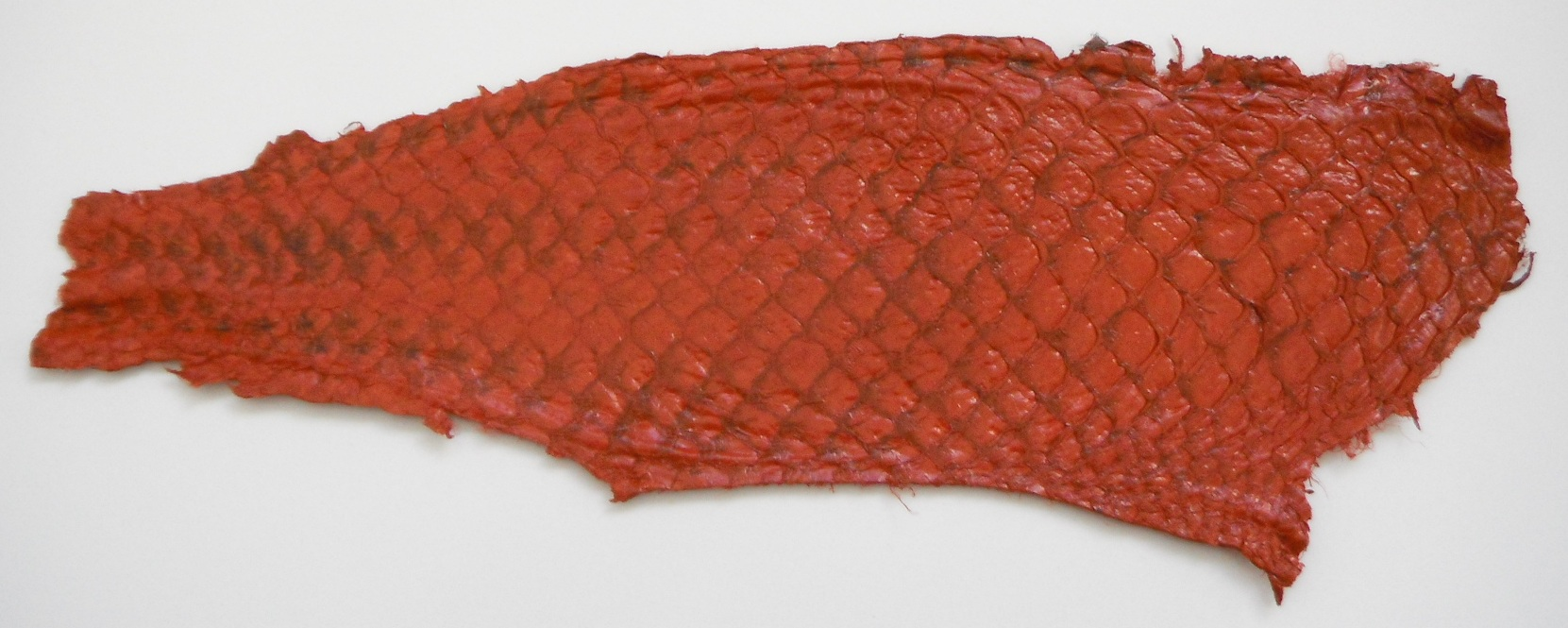 Eco friendly handmade soft suede Red Tilapia Fish Skin Leather.